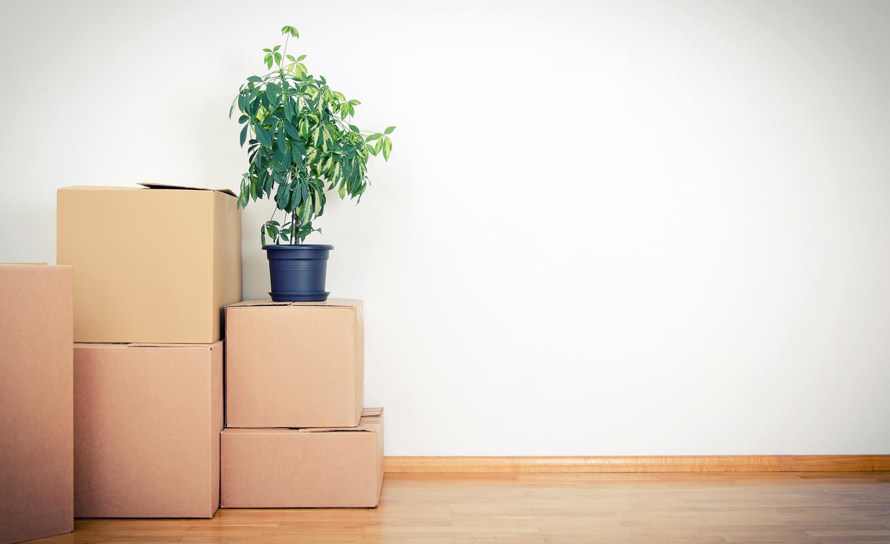 Déménégement : comment trouver un bon déménageur?